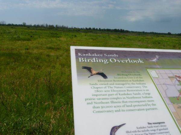 Kankakee Sands Birding Overlook